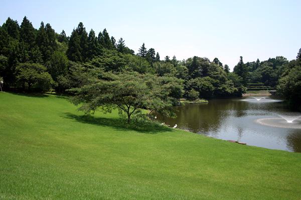川村記念美術館